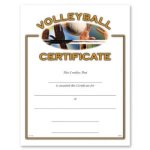 Volleyball Certificate Award Volleyball Trophy Awards